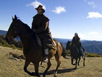 Horse Riding Attractions