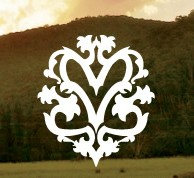 Mountain View Logo and Images