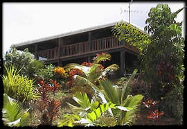 Daintree Manor Logo and Images