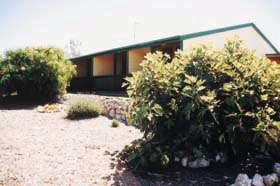 The Fig Tree Bed & Breakfast Logo and Images