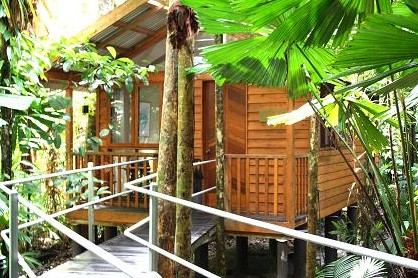 Daintree Wilderness Lodge Logo and Images