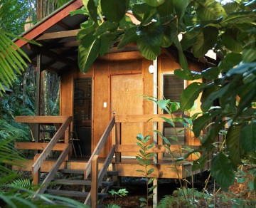 Cape Trib Beach House YHA Logo and Images