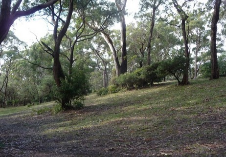 Booderee National Park: Green Patch camping area Logo and Images