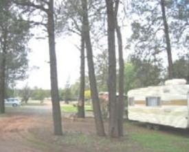 The Kelpie Caravan Park Logo and Images