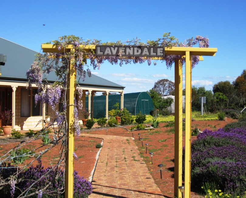 Lavendale Farmstay and Cottages Image