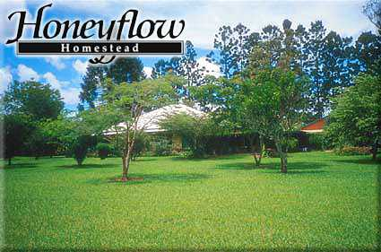 Honeyflow Homestead Logo and Images