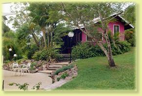 Jacaranda Cottage Logo and Images