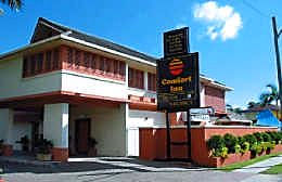 Comfort Inn The Rose Logo and Images