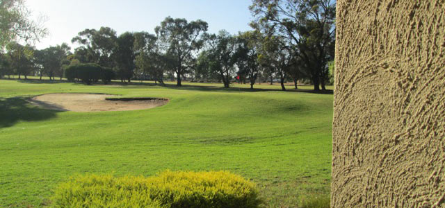 Comfort Inn Barmera Country Club Logo and Images