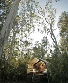 Paperbark Camp Logo and Images