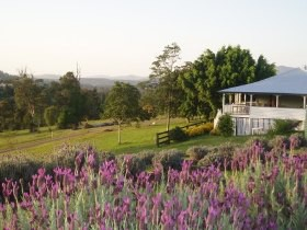 Blue Ridge Lavender Farm And Retreat Logo and Images