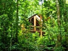 Fur'N'Feathers Rainforest Tree Houses Logo and Images