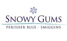 Snowy Gums Chalet - Smiggin Holes Logo and Images