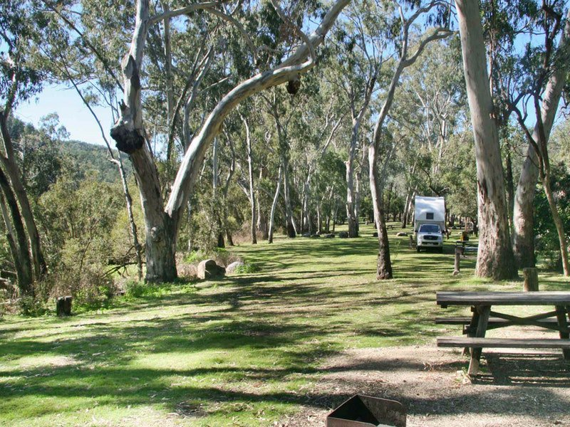 Lemon Tree Flat campground Logo and Images