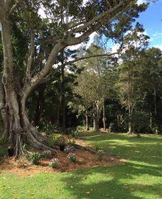 Beechmont Retreat Image