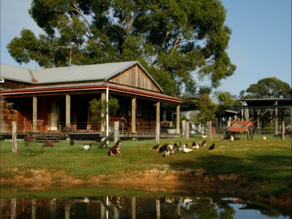 Tobruk Sydney Farm Stay Logo and Images