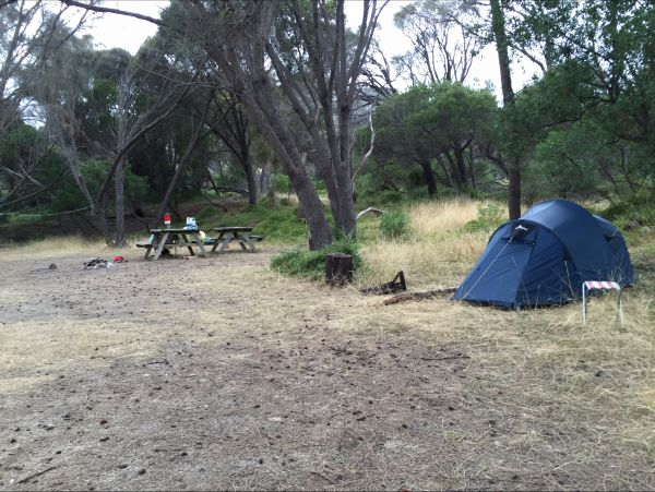 Allports Beach Camping Ground Image