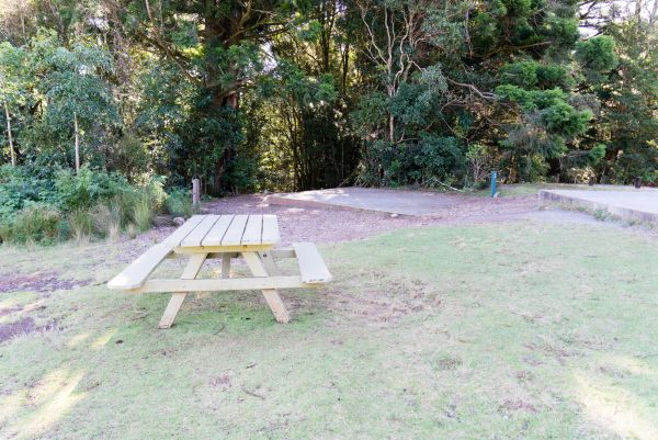 Lamington National Park Camping Ground Logo and Images