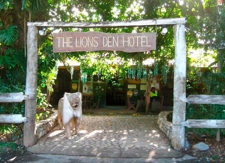 Lions Den Hotel Logo and Images