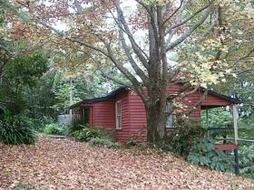Turkeys Nest Rainforest Cottages Mt Glorious