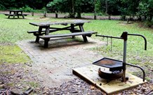 Bellbird campground Logo and Images