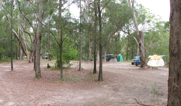 Wallingat River campground Logo and Images