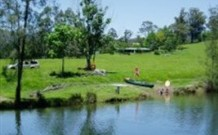Bellingen Farmstay Logo and Images