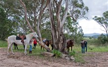 Fine Thyme Snuggery of Kangaroo Valley Logo and Images
