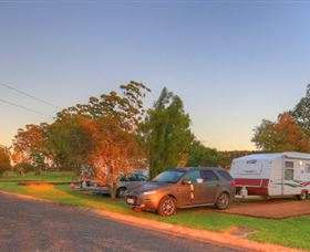 Yarraman Caravan Park Logo and Images
