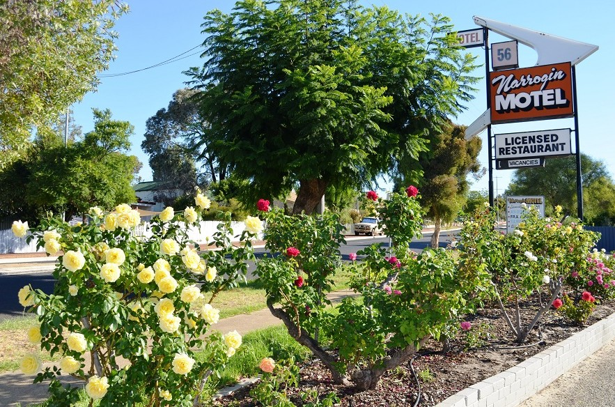 Narrogin Motel Image