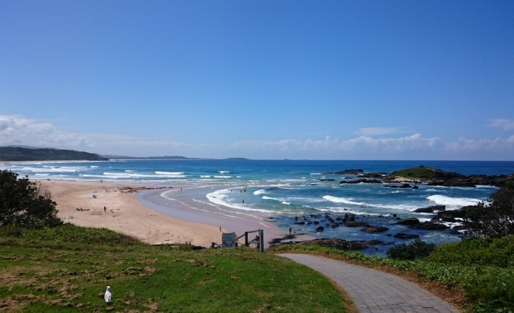 Sawtell Beach Logo and Images