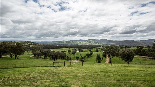 Holmesglen at Eildon - The Homestead Logo and Images