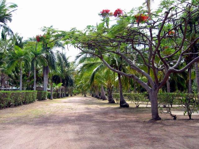 Alva Beach Tourist Park