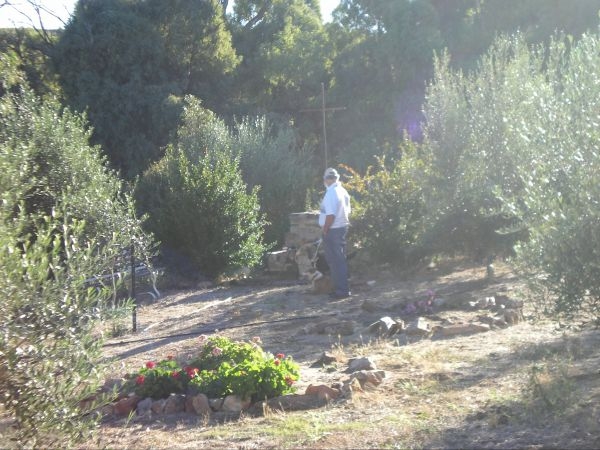 Olive Grove Retreat Logo and Images