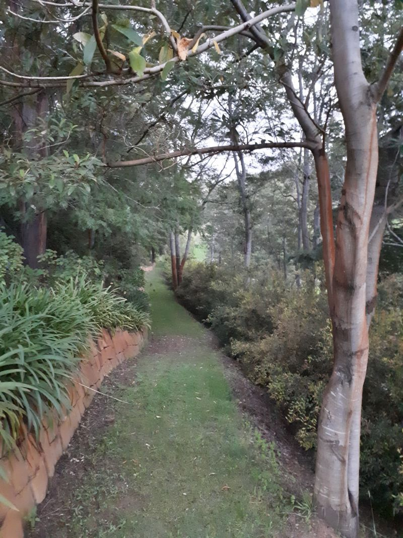 Plynlimmon The Cottage at Kurrajong Logo and Images