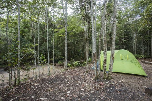 Eungella National Park Camping Ground Logo and Images