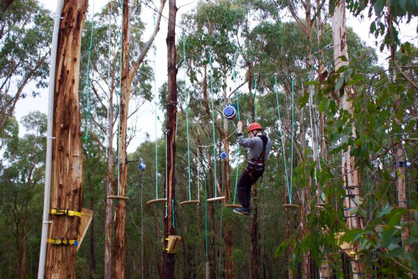 Kinglake Forest Adventures Camp Logo and Images
