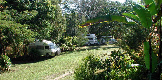Kuranda Rainforest Accommodation Park Logo and Images