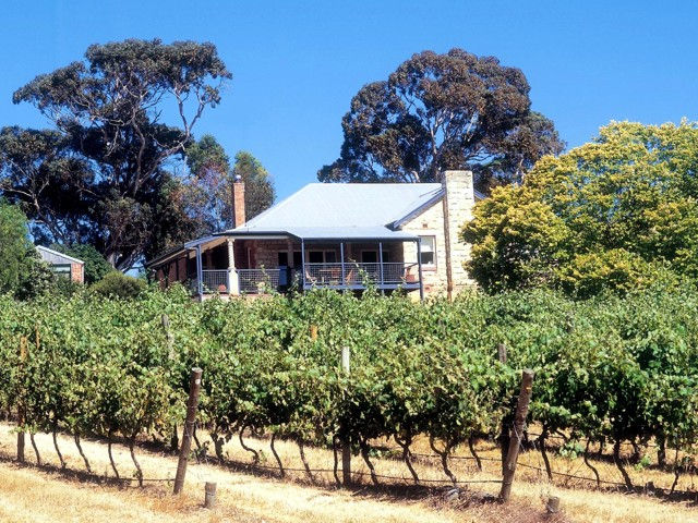 Longview Vineyard Image
