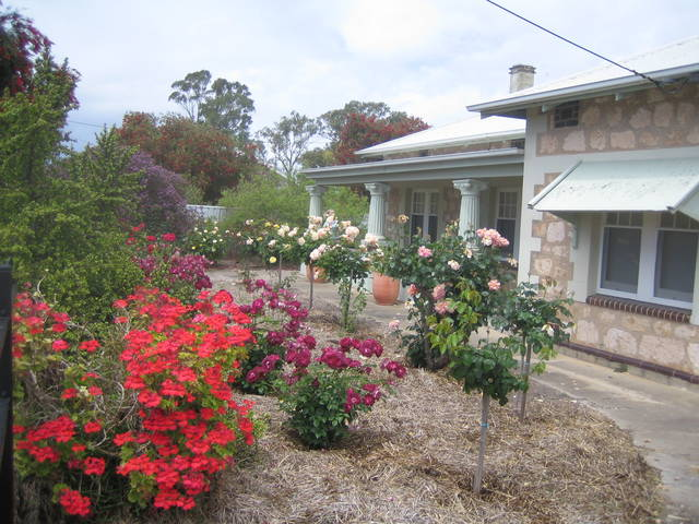 MacDonnell House (Naracoorte Cottages) Image