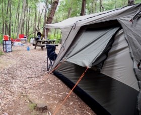 WA Wilderness Catered Camping at Big Brook Arboretum Logo and Images
