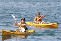 Manly Kayaks Image