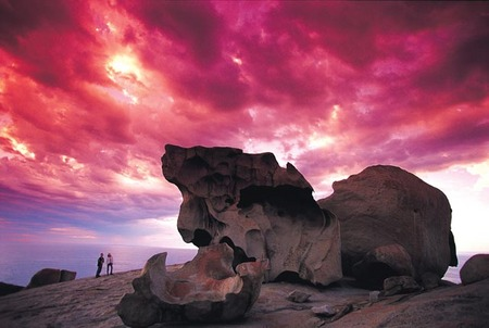 Kangaroo Island Adventure Tour 2 day/1 night Image