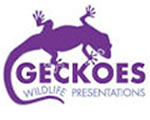 Geckoes Wildlife Presentations Logo and Images