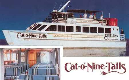 Cat O' NineTails Logo and Images
