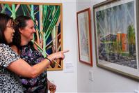 Bundaberg Regional Art Gallery Logo and Images