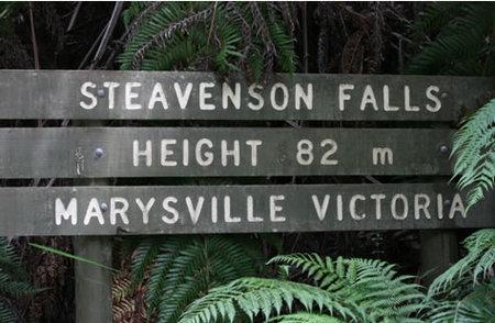 Stevensons Falls Image