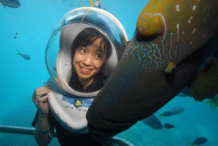 Sunlover Reef Cruises Image