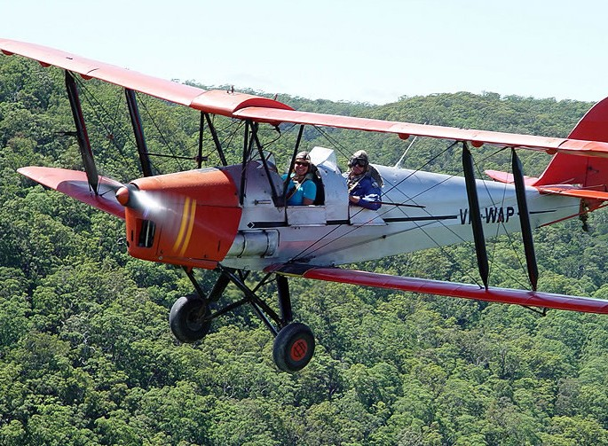 Tigermoth Joy Rides Image