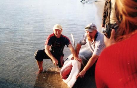 True Blue Fishing Charters Image